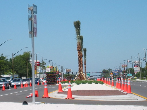 Beautification of Colonial US 50 Winter Garden